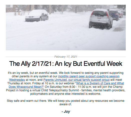 Screen shot from the Ally newsletter for February 17, 2021