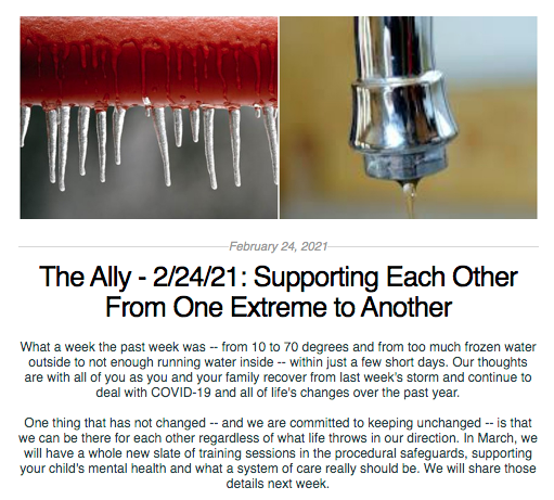 Screen Shot from The Ally Newsletter from February 24, 2021